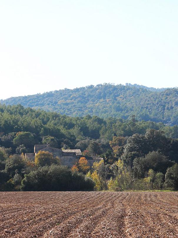 Senderismo Rutas Girona Casa Alquiler Can Gich