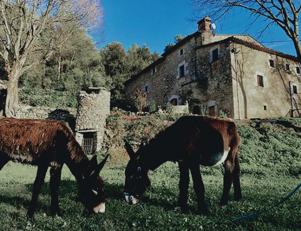 Rucs-Can-Gich-Casa-Rural-Familia-Girona