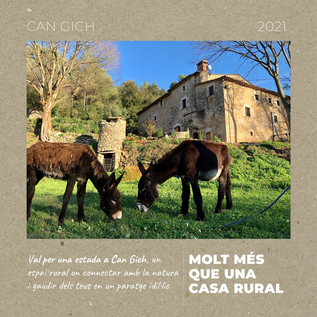 Val Regal Animals Casa Rural Girona Can Gich